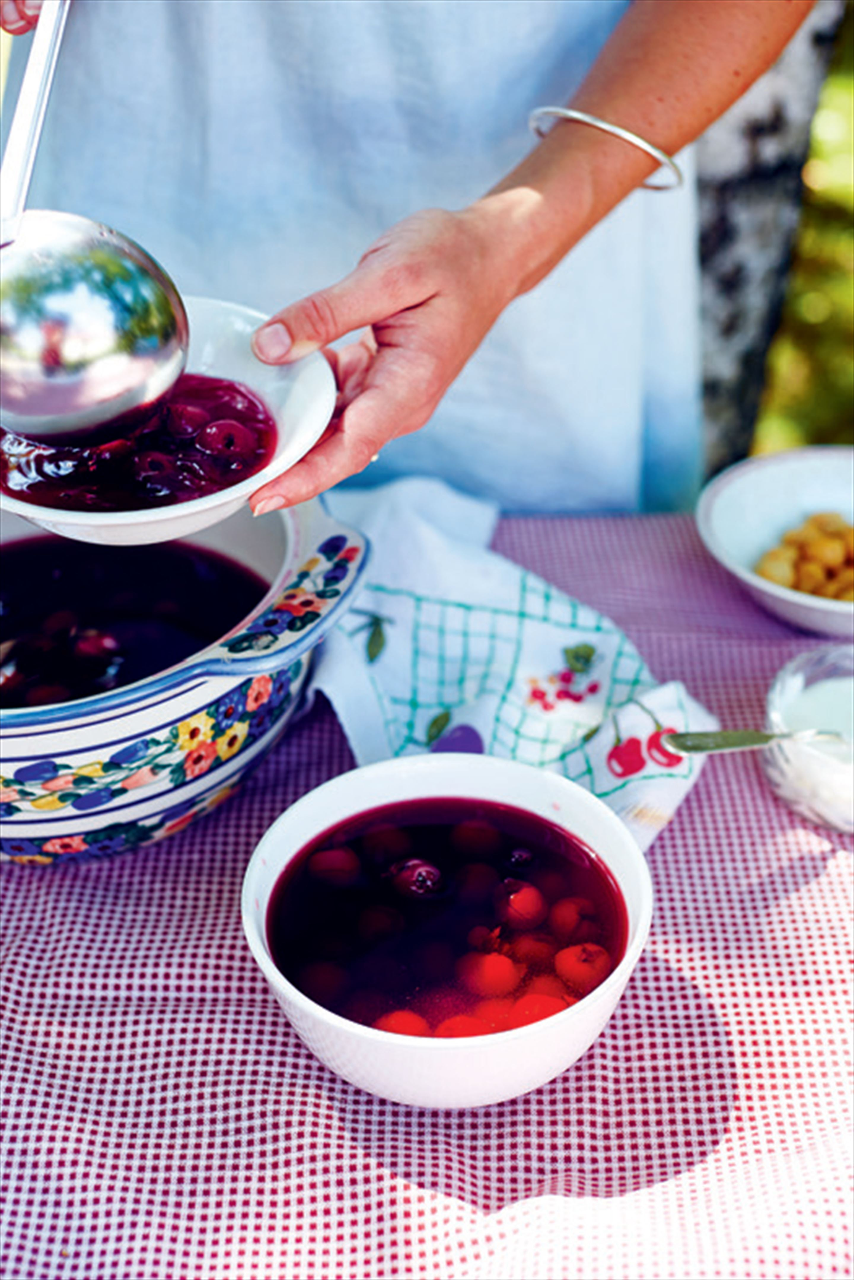 Wild cherry summer soup