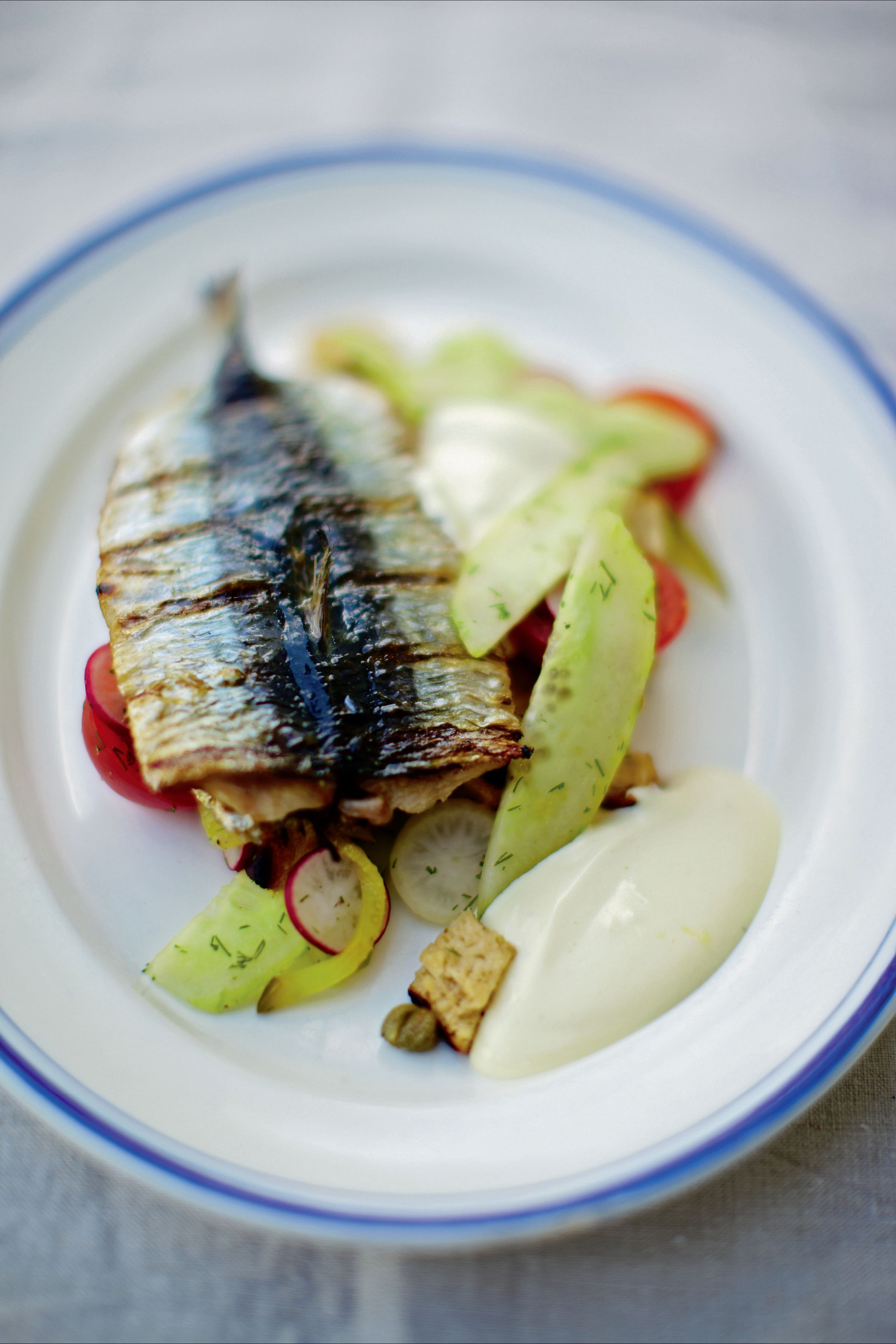 Barbecued sardines with brown bread salad and salad cream