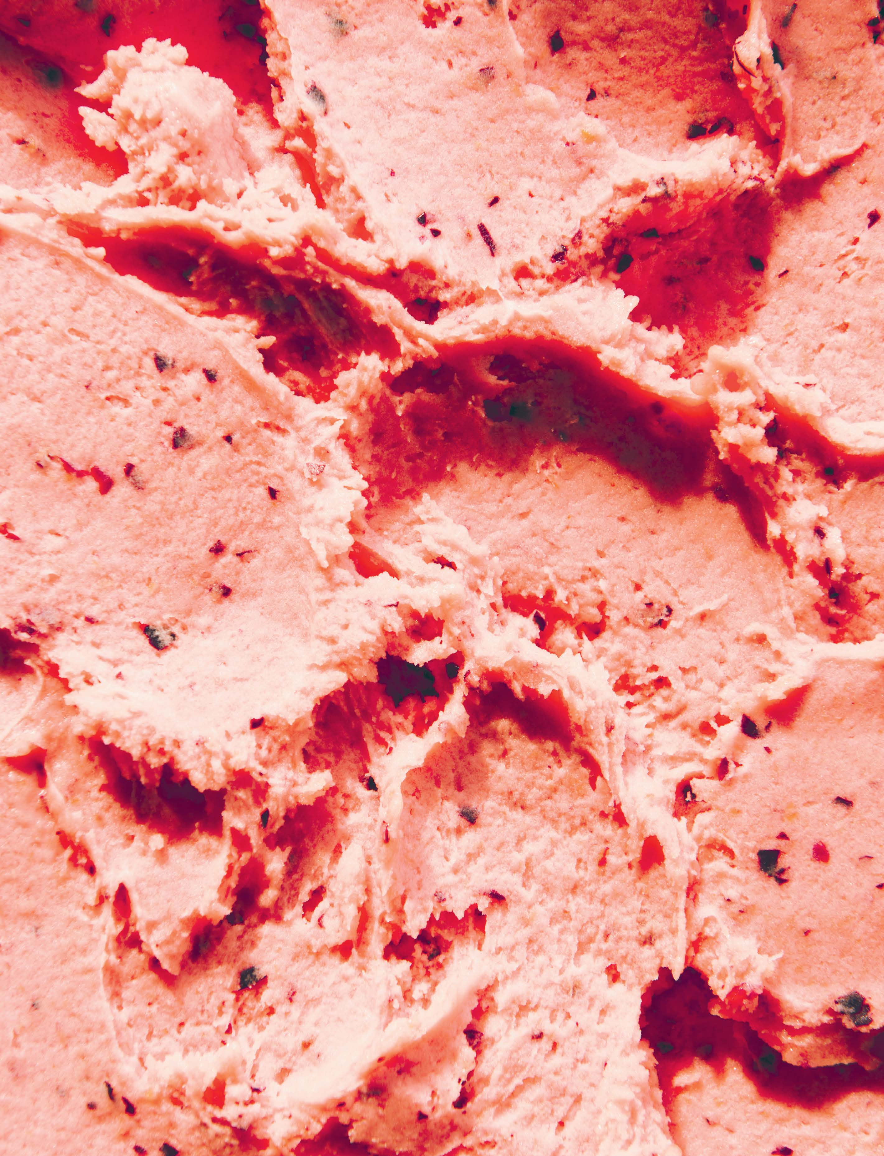 Blood plum sorbetto