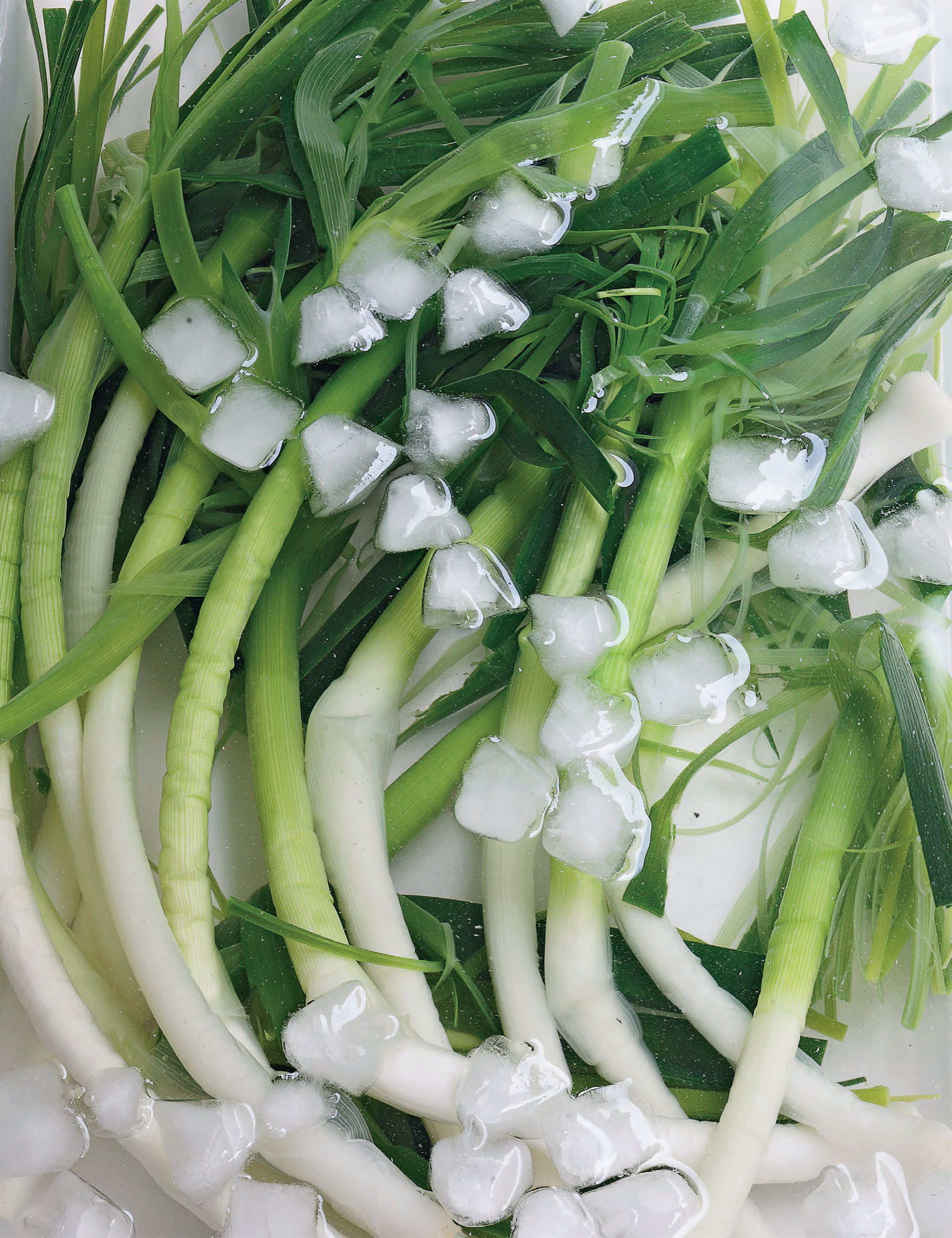 Poached young leeks with gribiche sauce