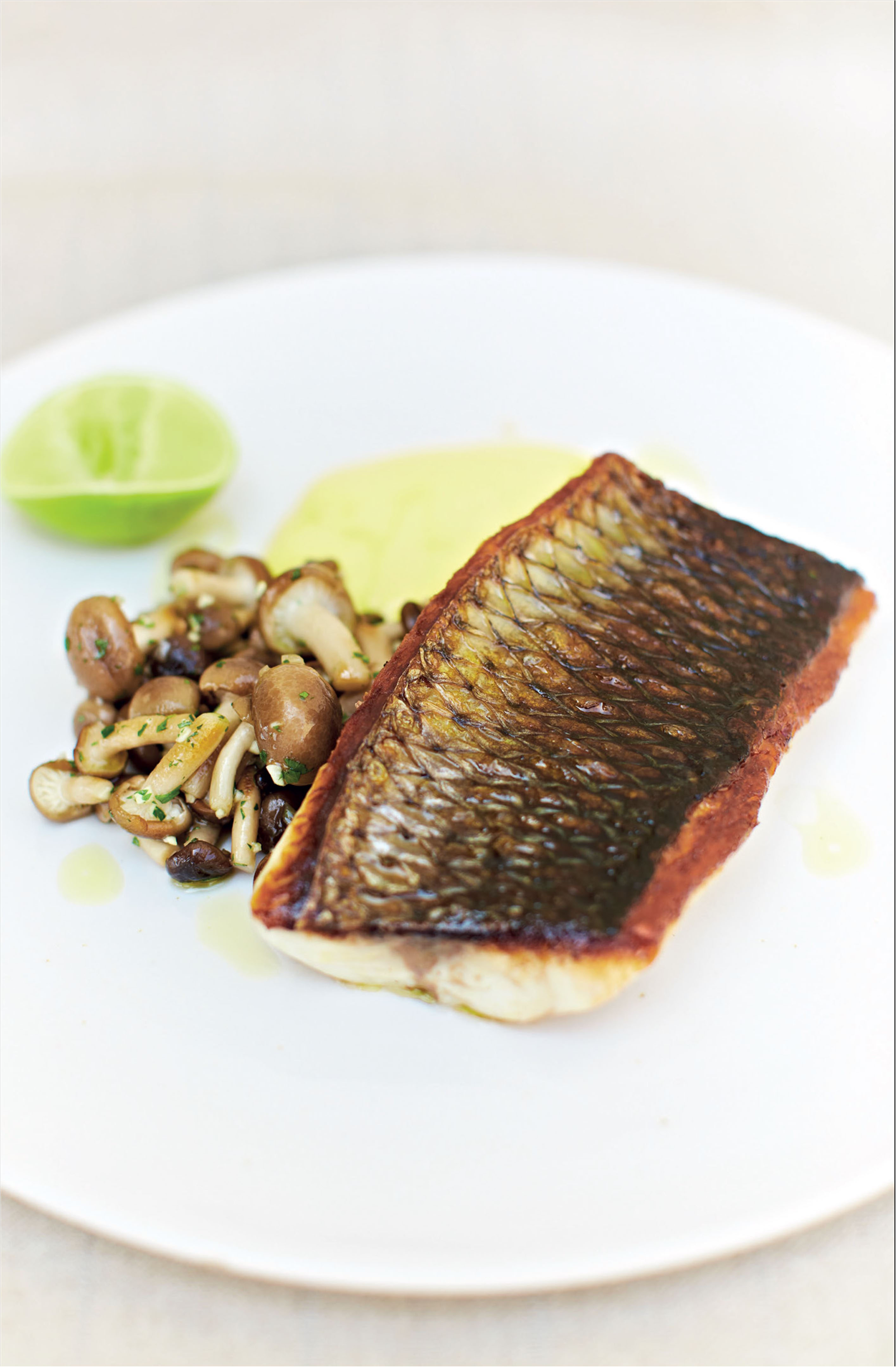 Grey mullet with mushrooms and saffron and roasted garlic potato purée