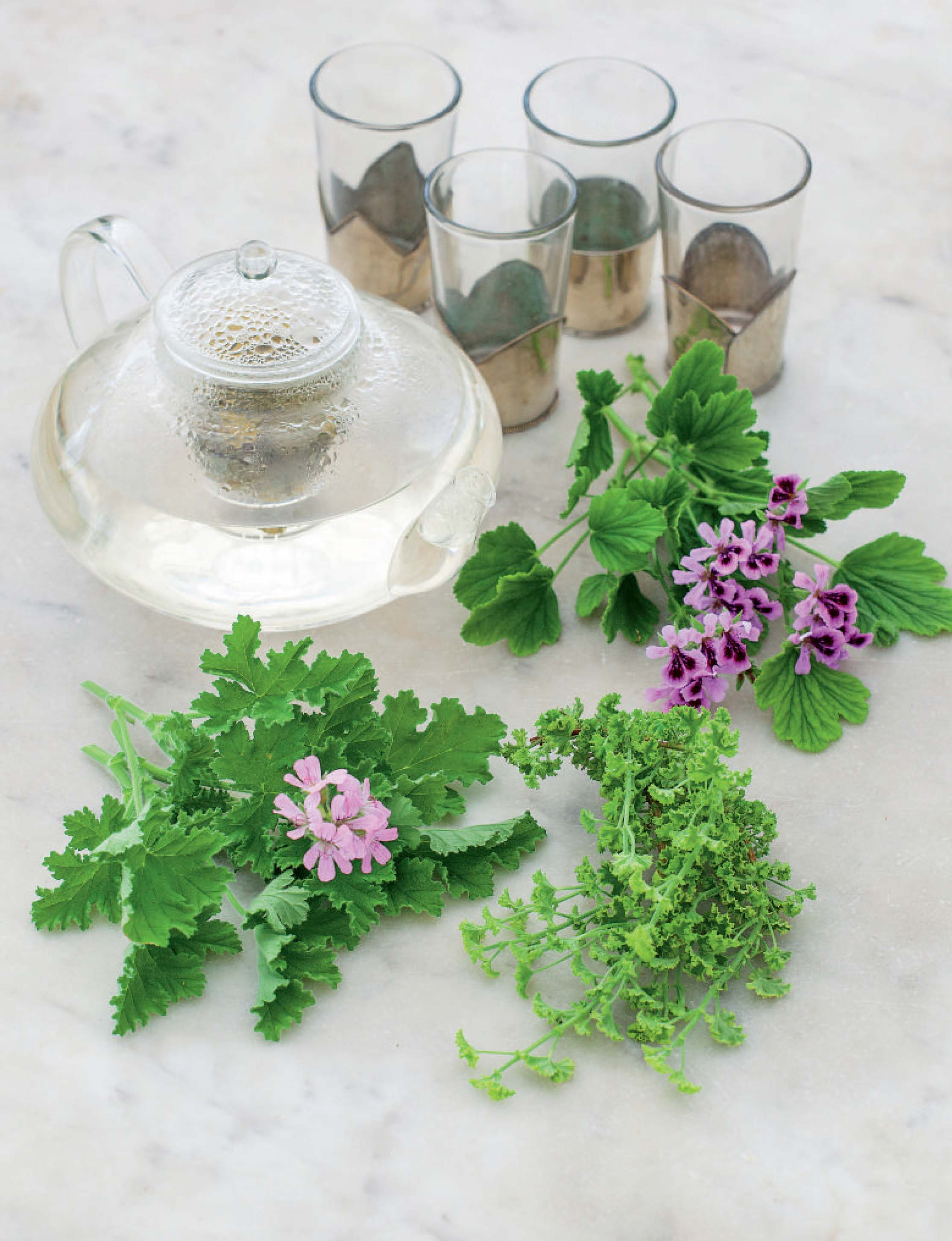 Rose geranium and lemon tea