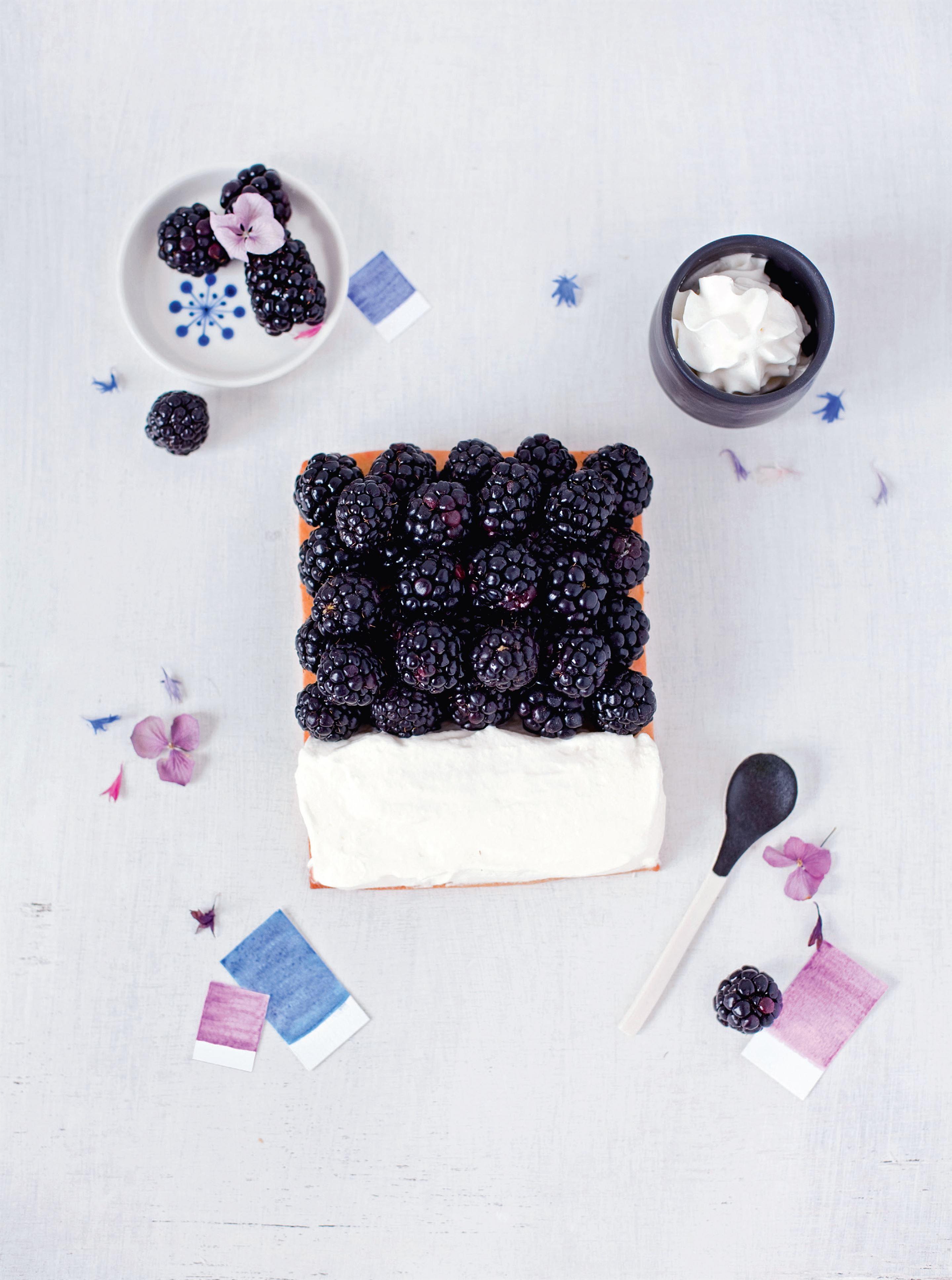 Blackberry - chantilly