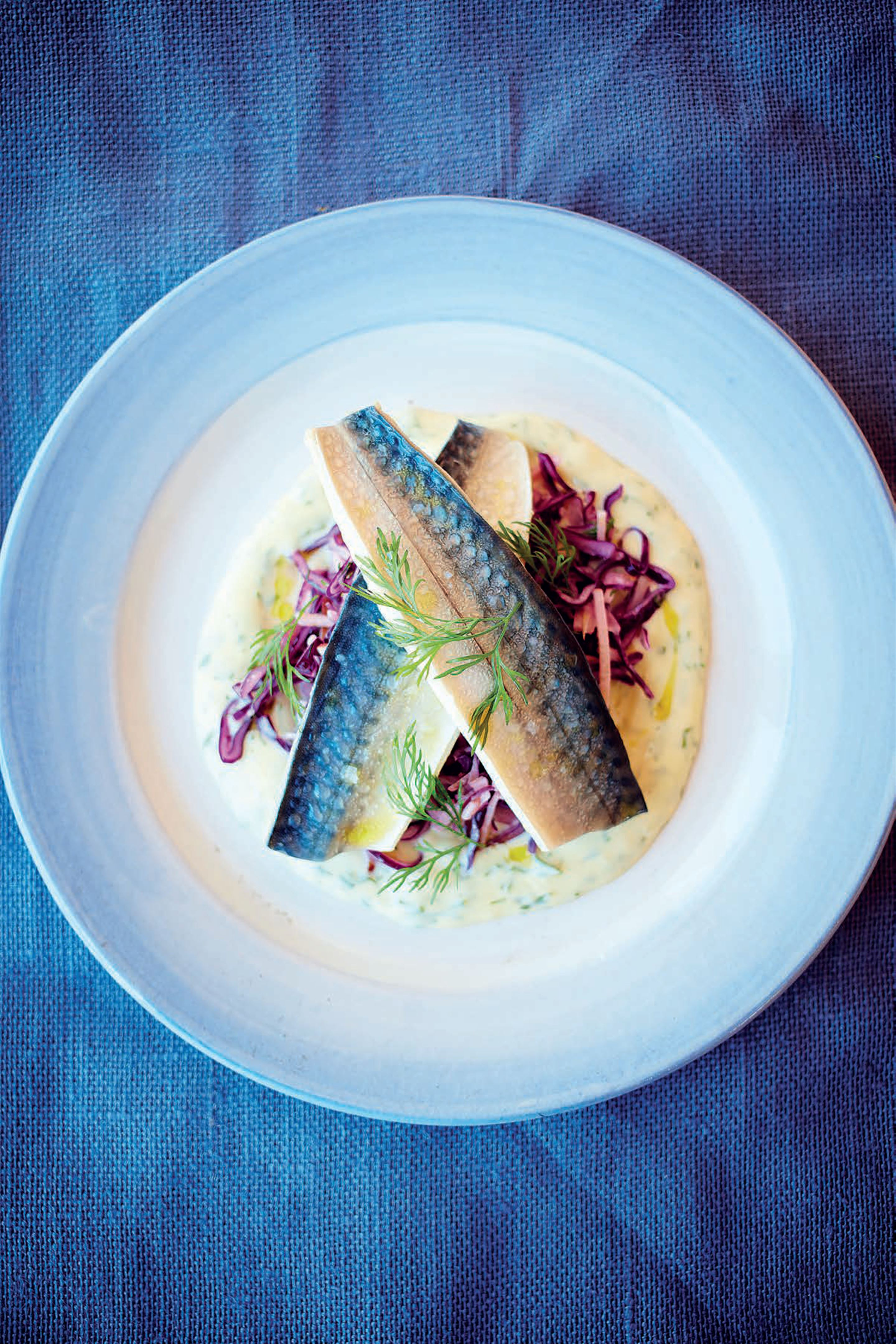 Pickled mackerel with red cabbage, apple and cider