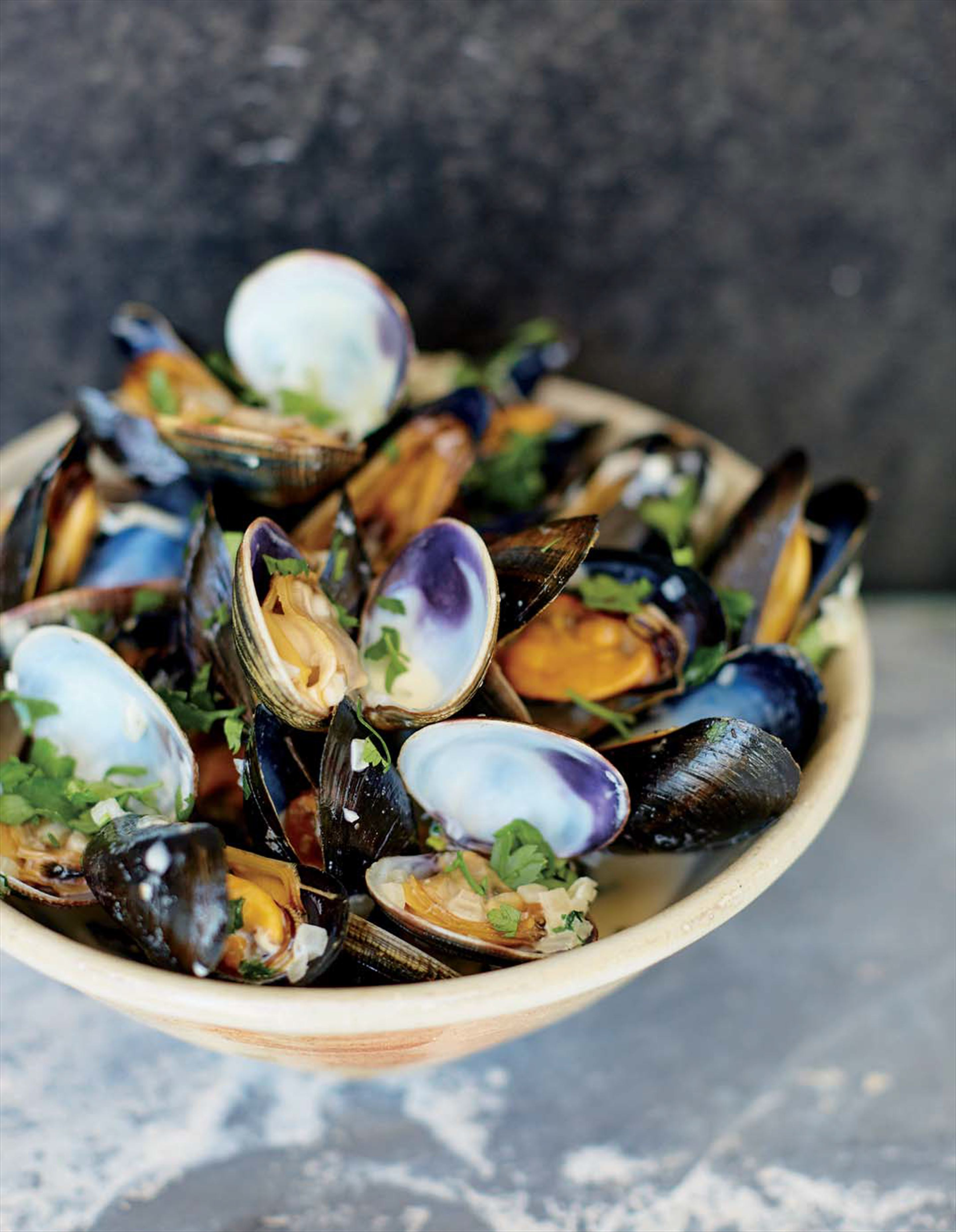Mussels and clams with wine and cream