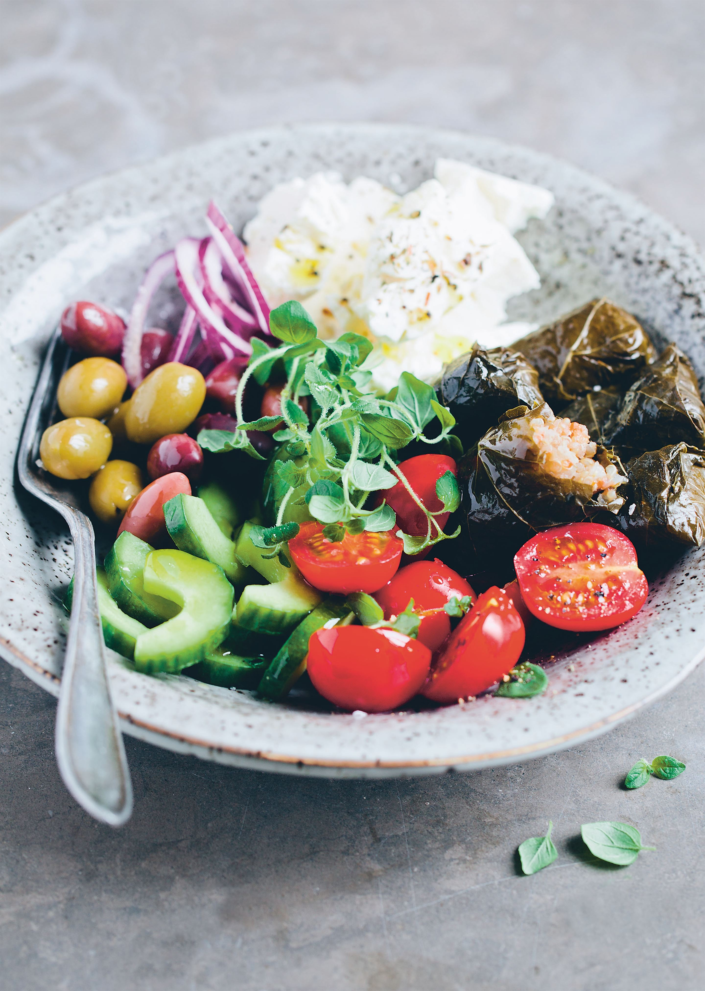 Quinoa dolmades with Greek salad