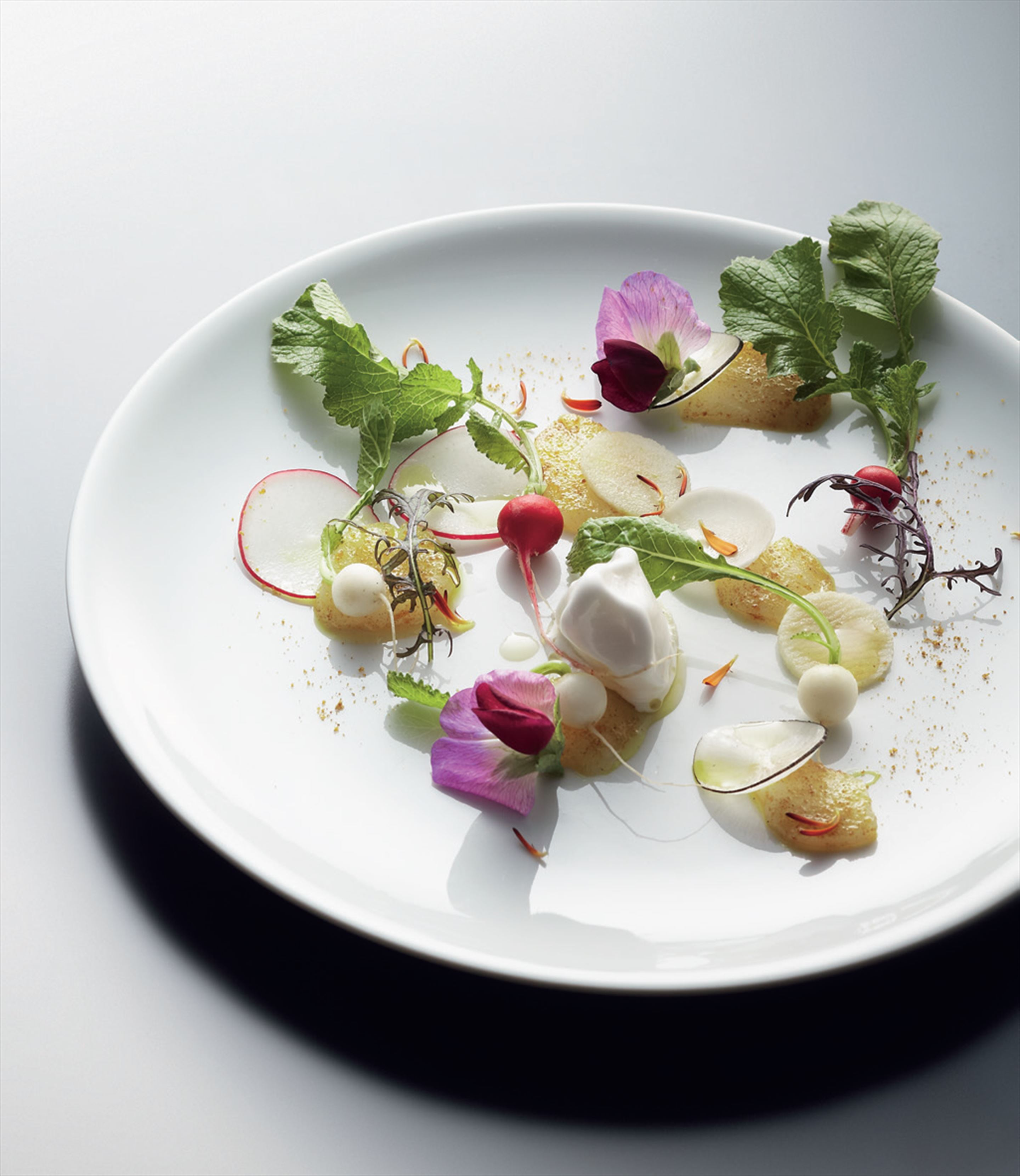 Spring bay scallops with vadouvan, radish, turnip and apple