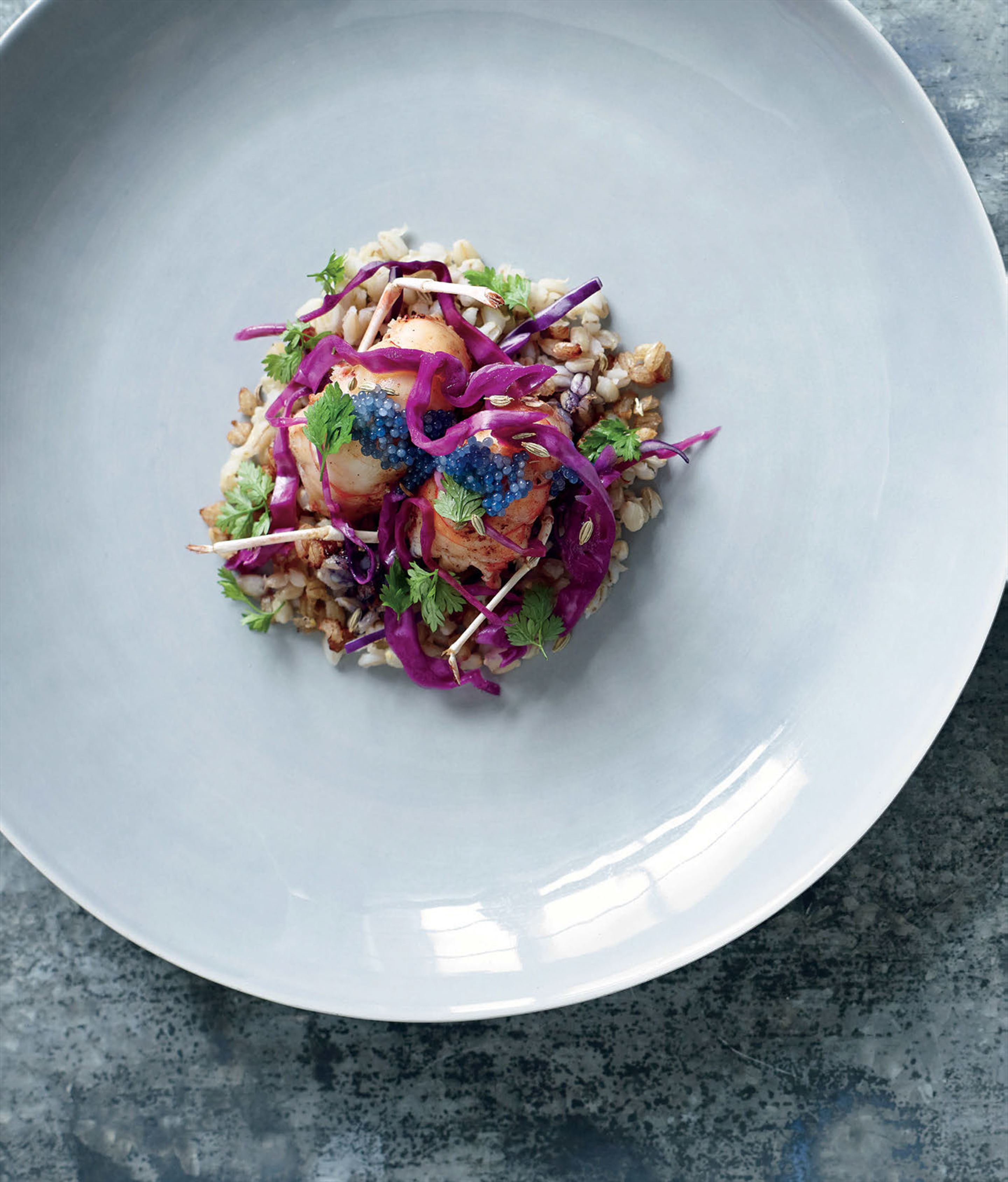 Scampi with pickled cabbage and textures of barley