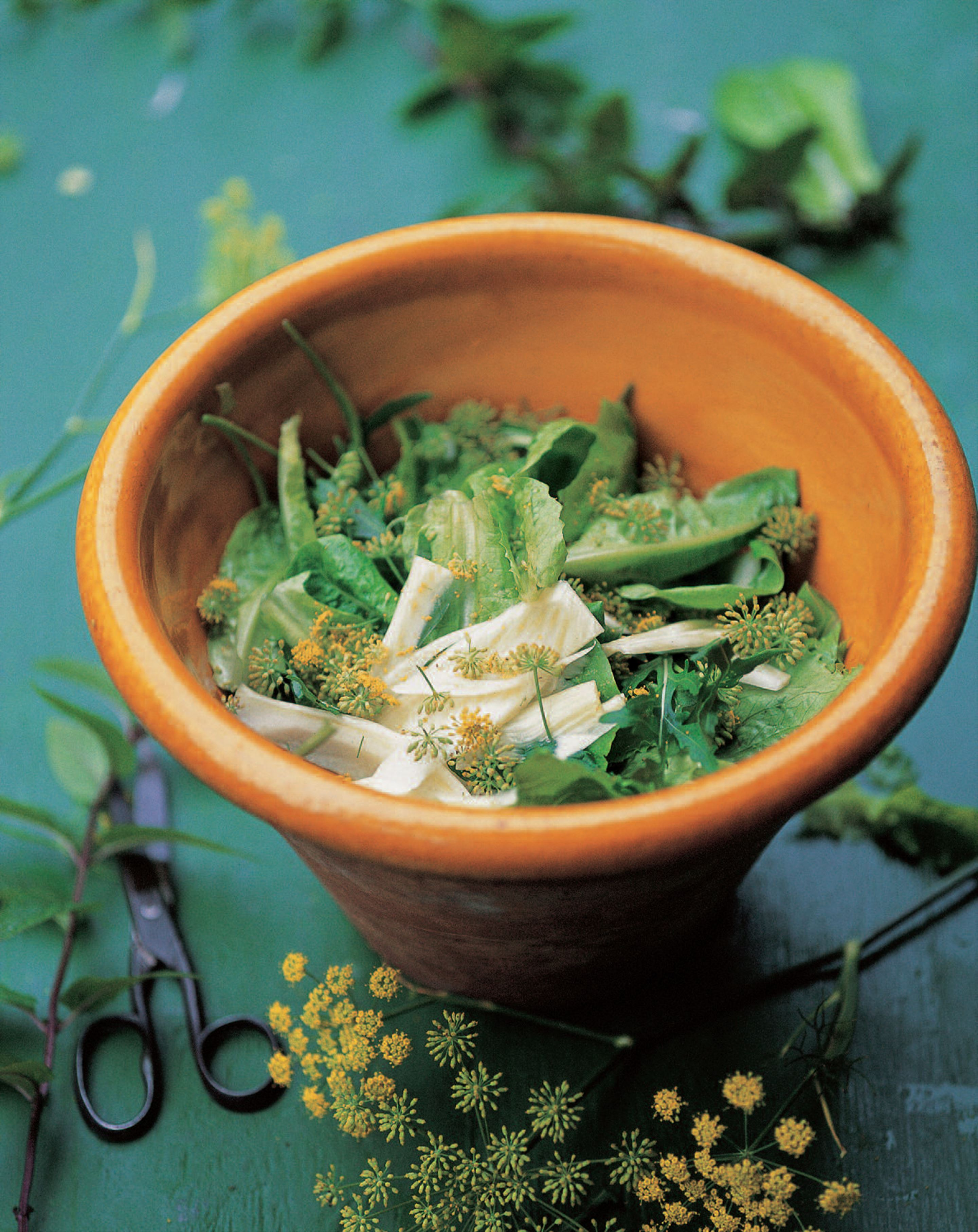 Green salad with fennel