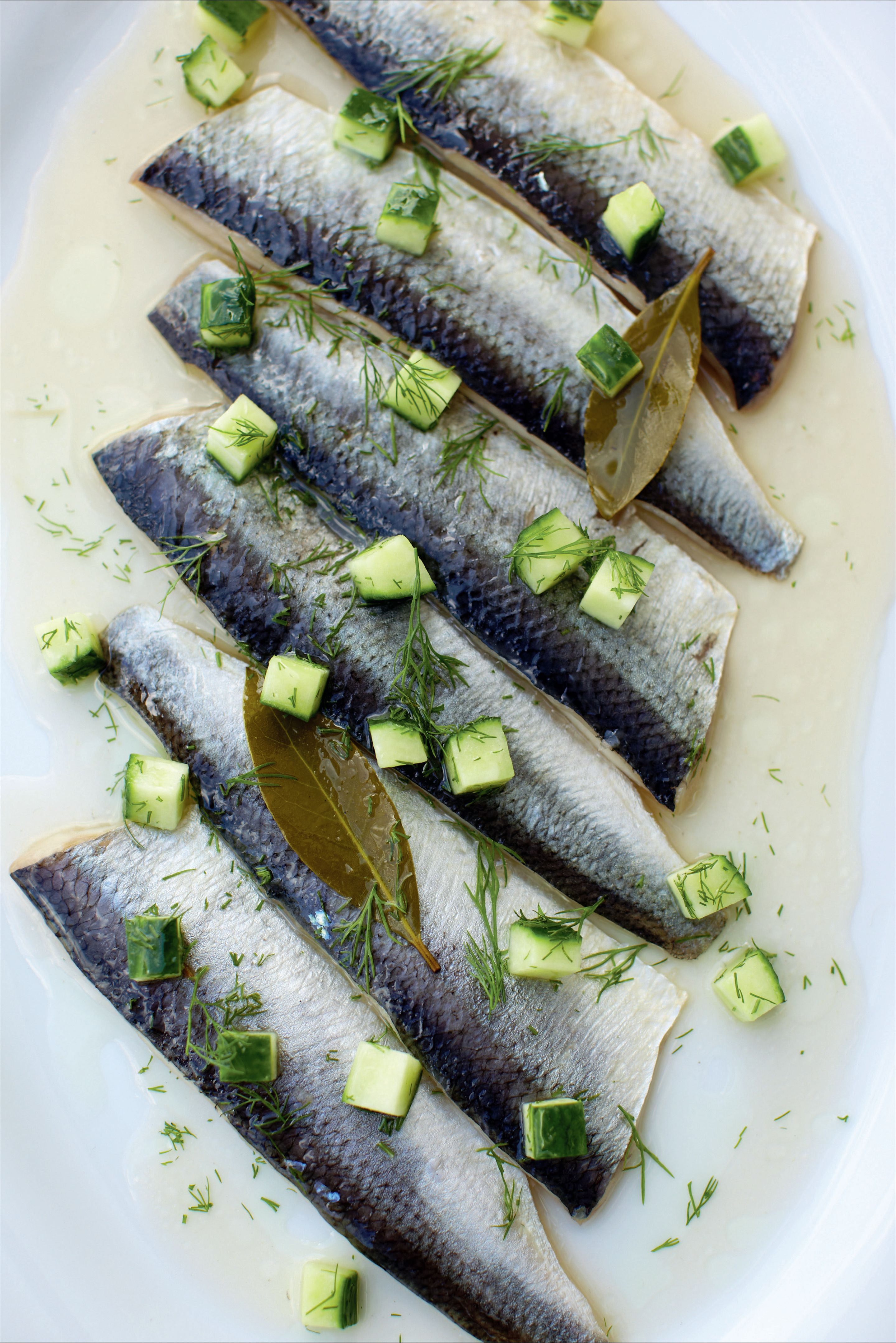 Pickled herrings with cucumber and dill