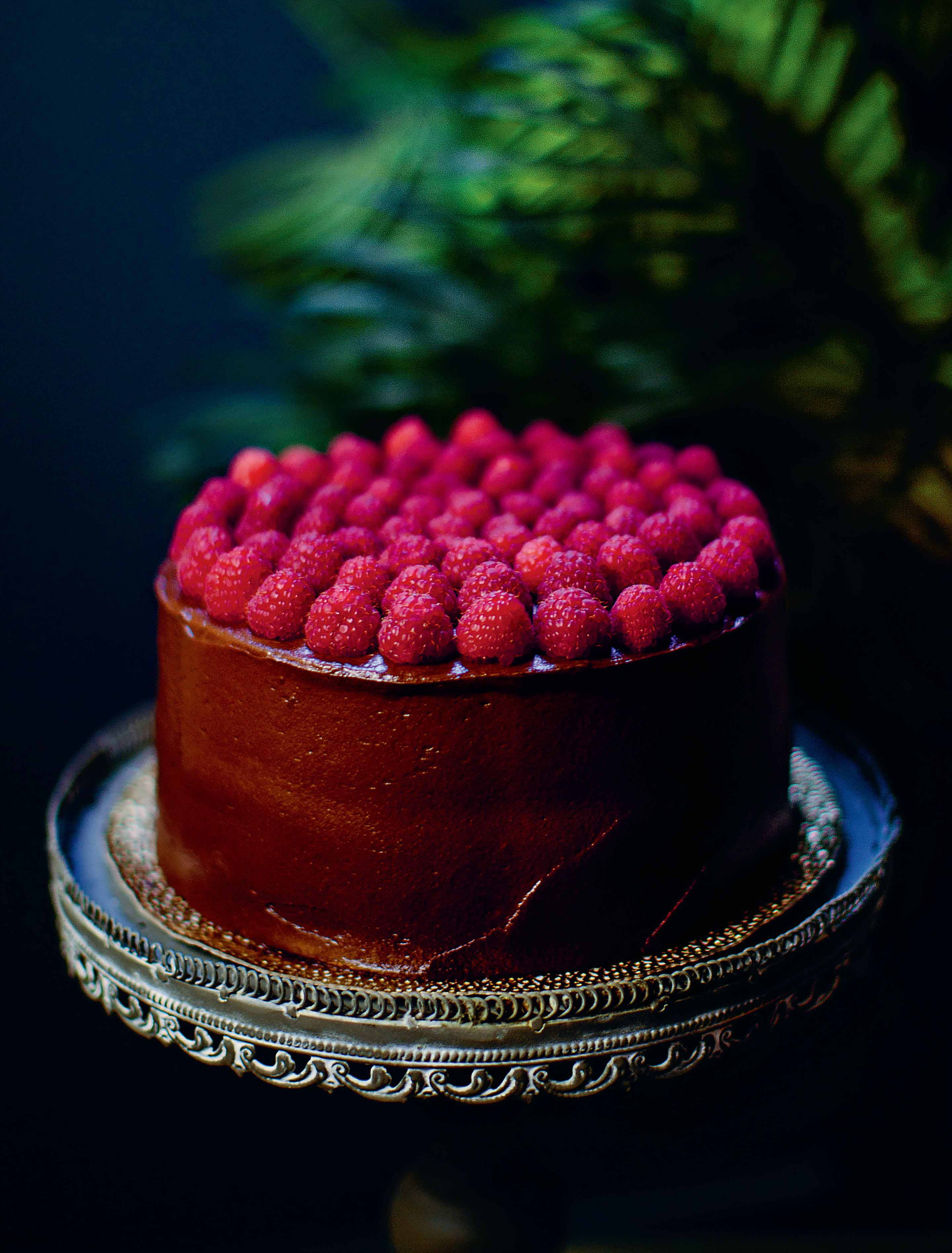 Chocolate and raspberry cake