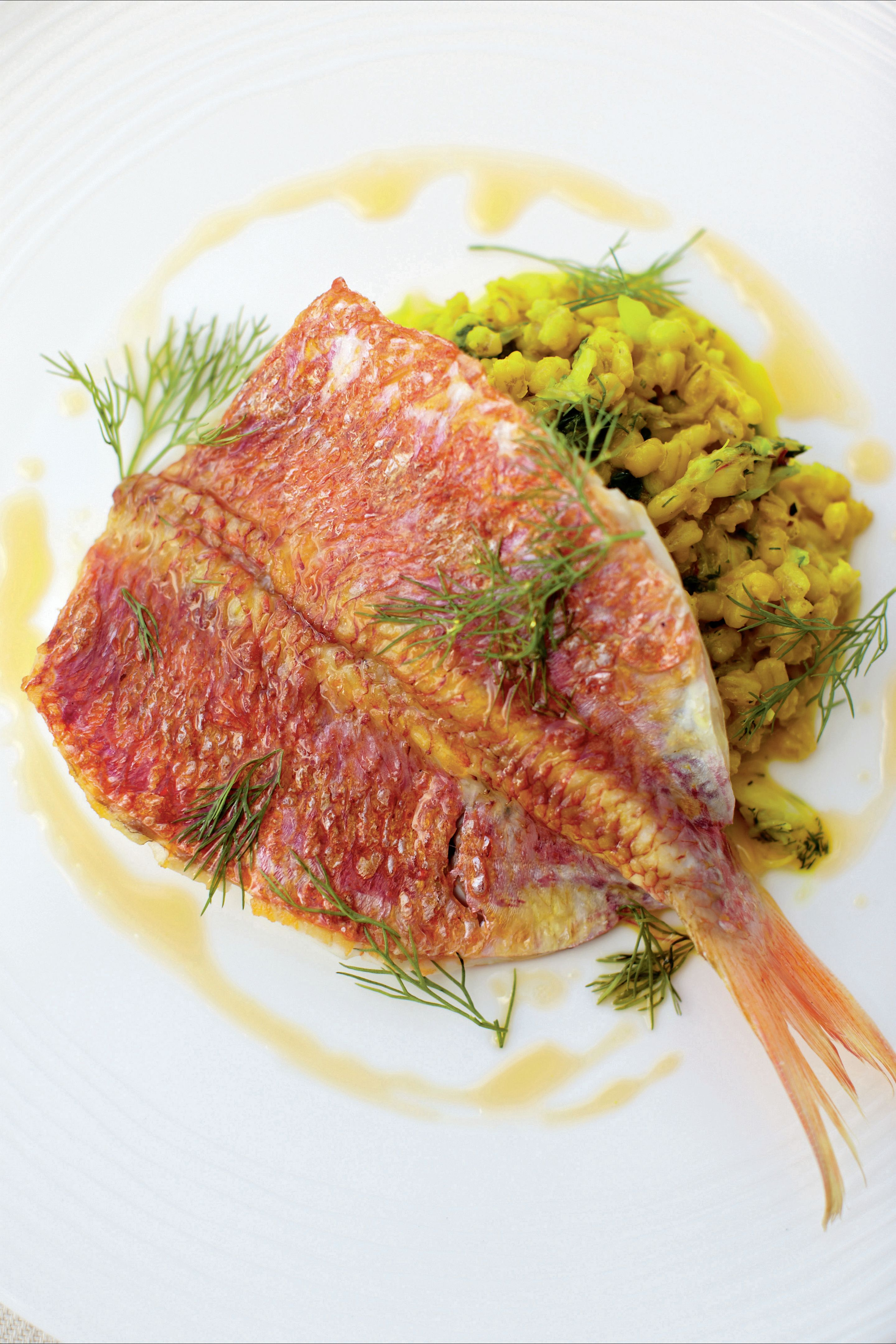 Red mullet with saffron, orange oil and spring onion barley