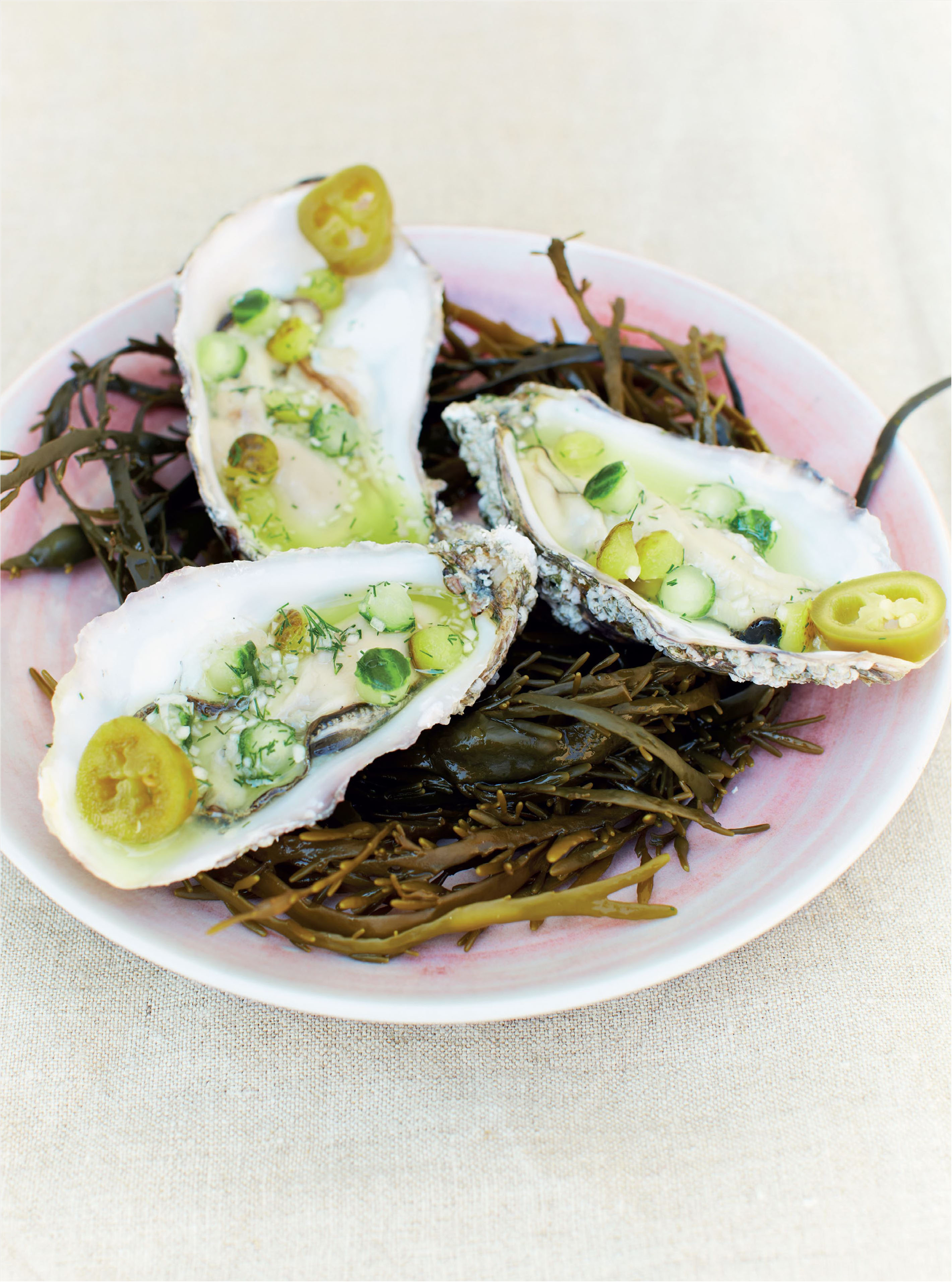 Lightly pickled oysters with gherkin, cucumber and jalapeño chilli