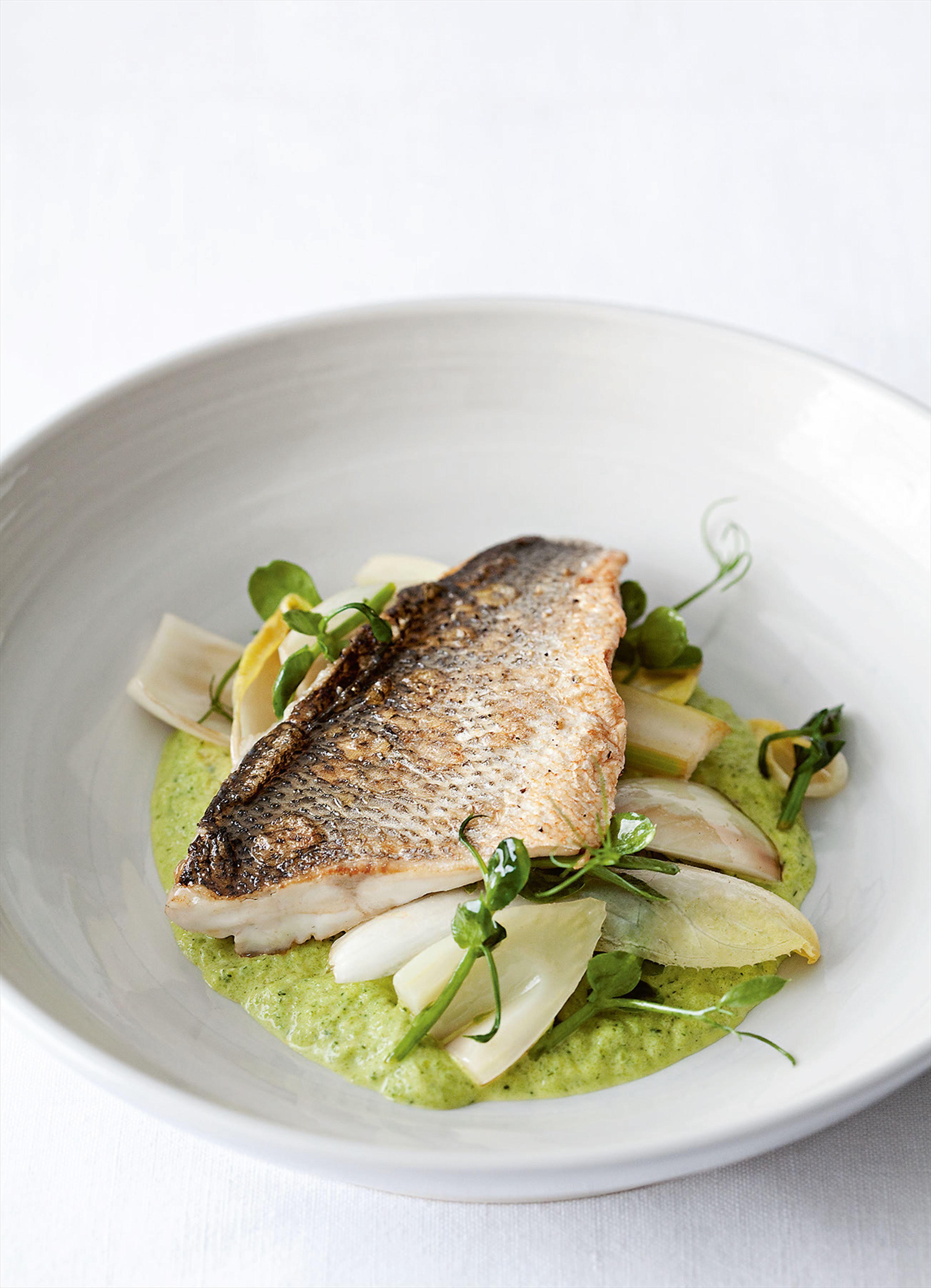 Sea bass with courgette sauce