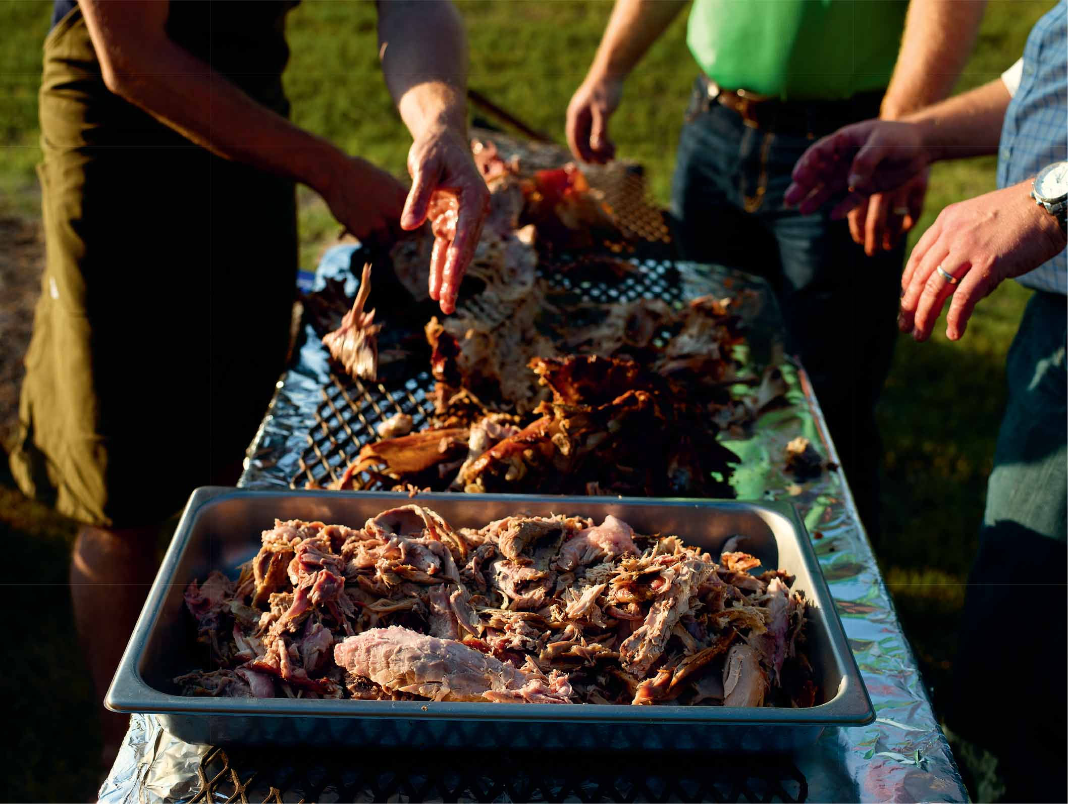 Whole hog roast