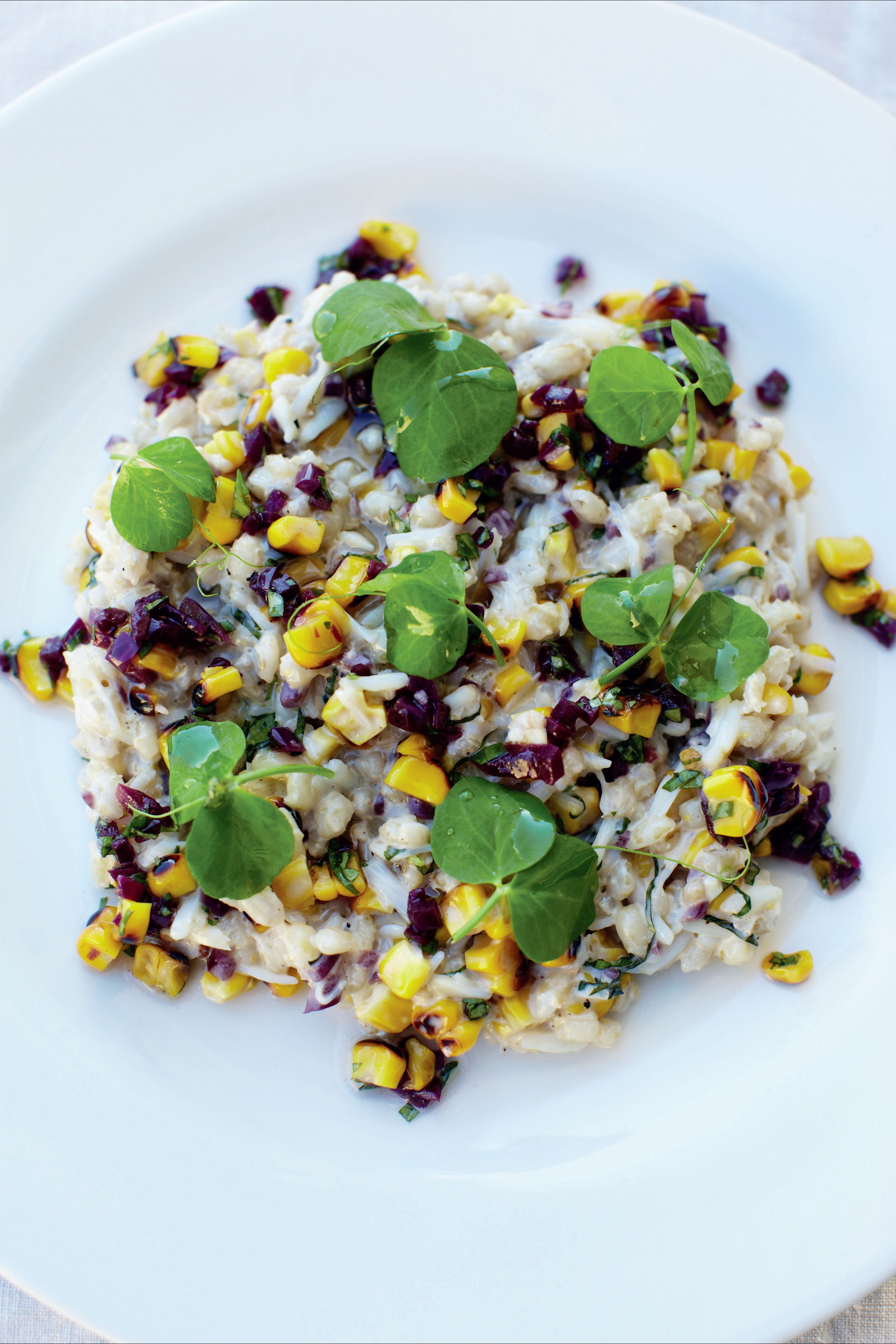 Spider crab, barley and sweetcorn with basil and red onion relish