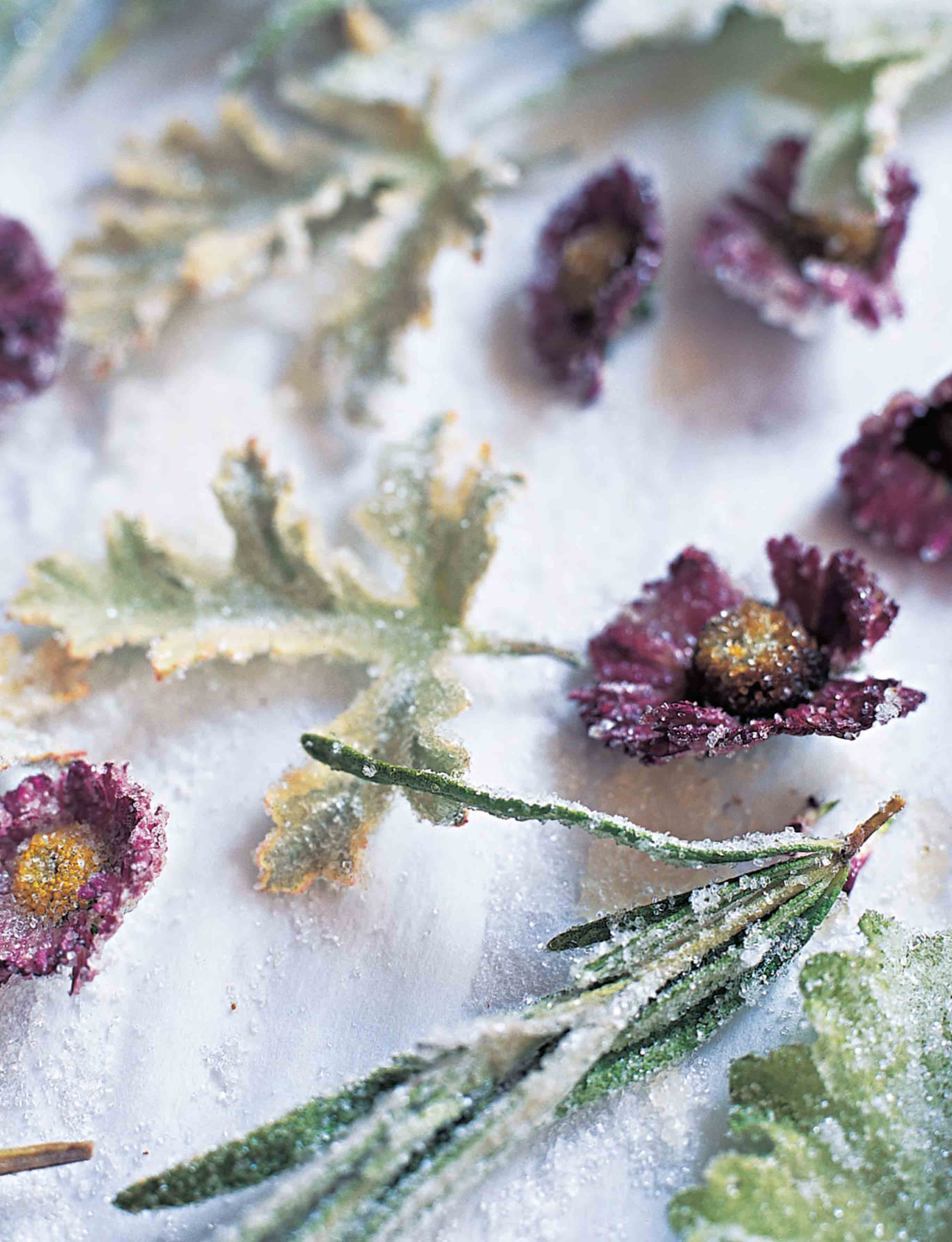Crystallised flowers and leaves